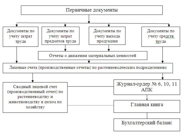 бухгалтерский учет материально-производственных запасов на предприятии