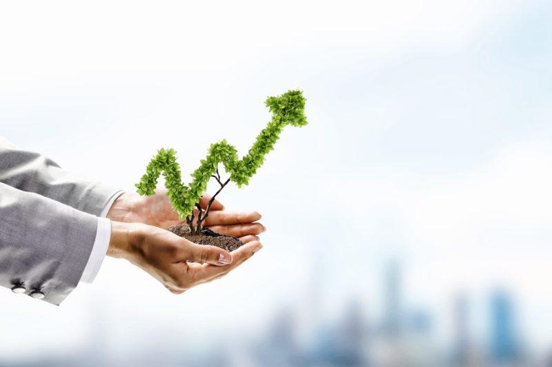 кредит начинающему предпринимателю